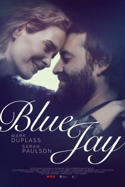 blue-jay-poster